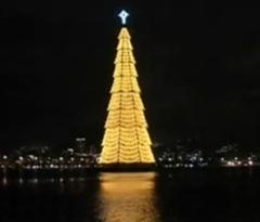 Floating_ Christmas_ Tree